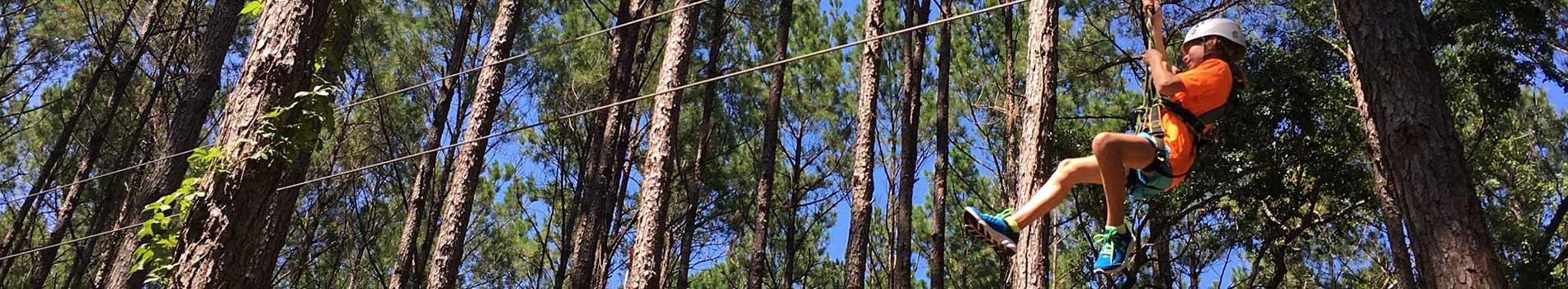 Backyard Zip Line Reviews kids zip koala course | charleston zip line adventures